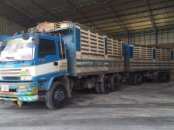ขายรถสิบล้อ ISUZU DECA 320ปี49 ดั้มเหล็กคอกเกษตร รถสวยพร้อมใช้งาน
